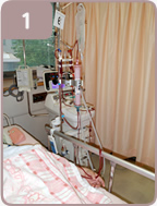「PMX」 「polymyxin-B immobilized column」 「B」 「固定」 「固定化」 「ポリミキシンB」 「ラム」